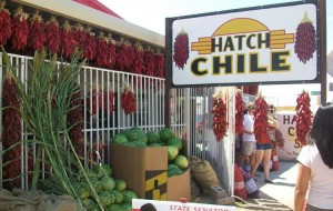 Hatch, located about 40 miles south of T or C and famous for it's green chiles, hosts an annual Chile Festival each fall.